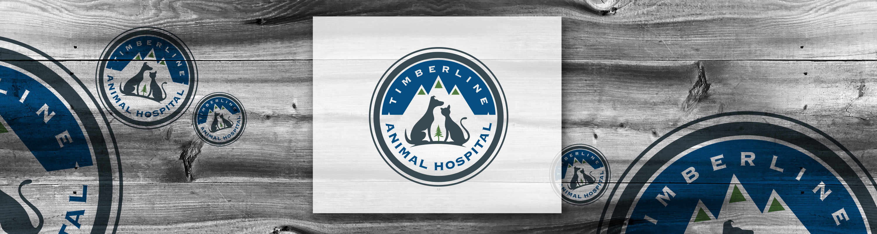 Fort Collins Logo Design: Timberline Animal Hospital